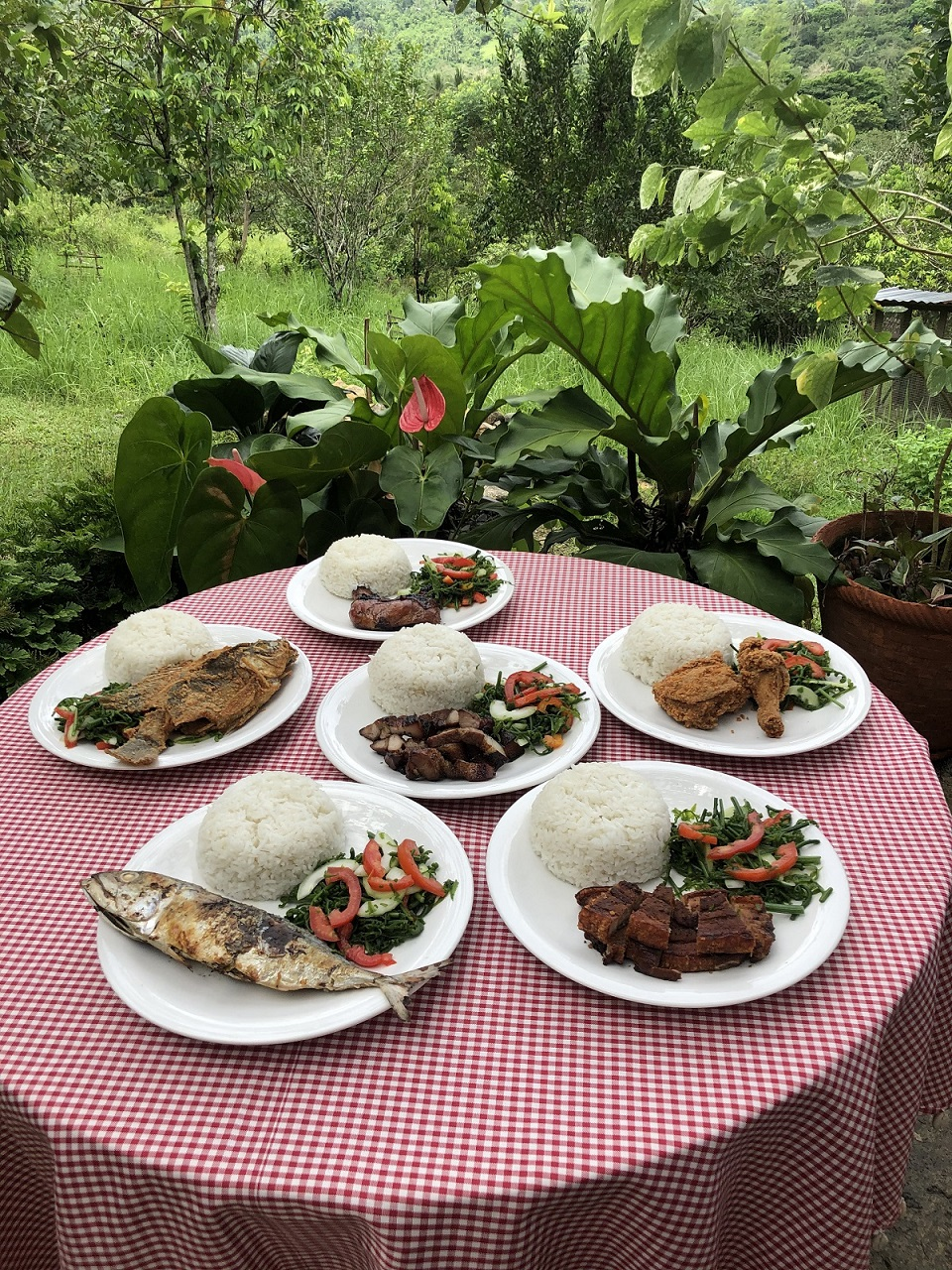 Assorted Plated Meals
